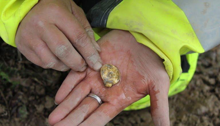 Seven rare gold pendants sacrificed 1,500 years ago found in Østfold, Norway.
