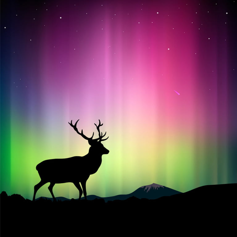Aurora borealis illustration featuring a deer
