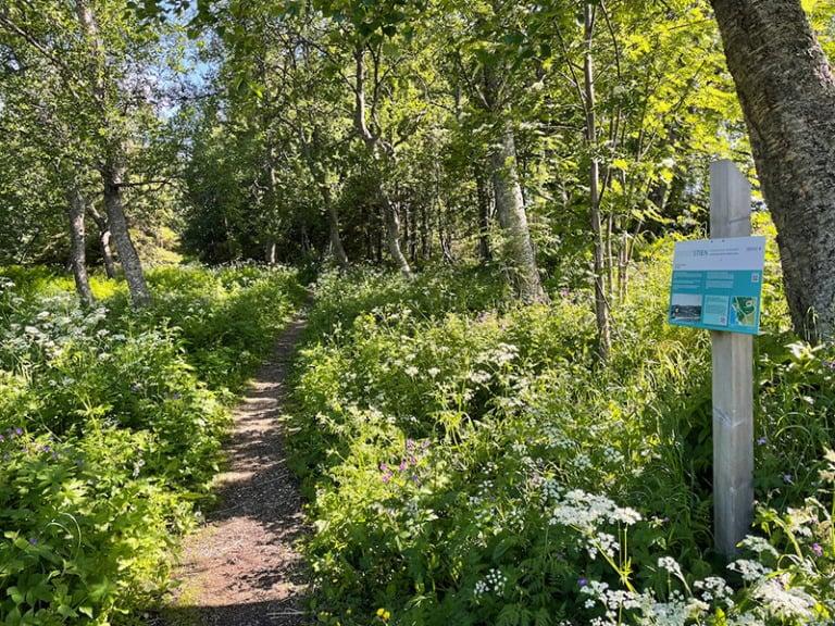 Nature trail near Tromsø museum