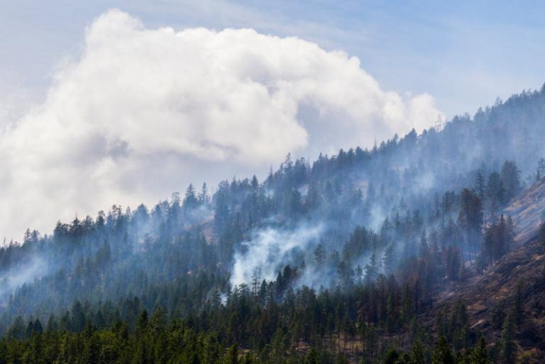 Brannrøyk i British Columbia, Canada