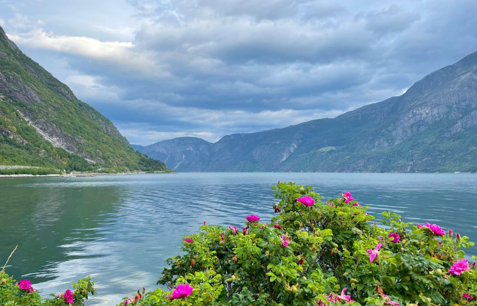 Hardangerfjord seen from Eidfjord village in Norway