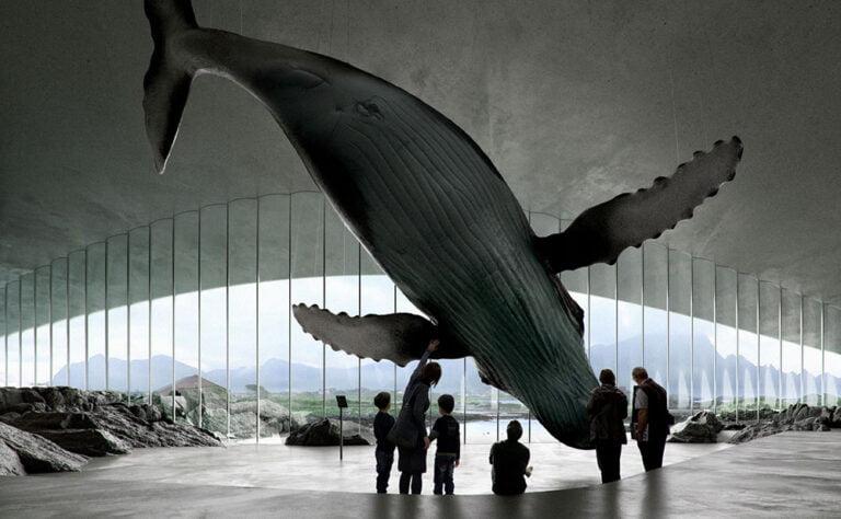 The Whale. Renderings by Mir, Bergen.