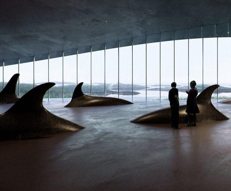 Sculptures of whales inside the visitor centre.